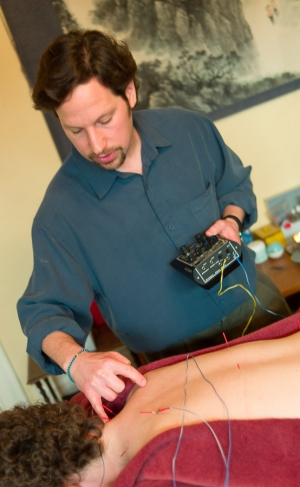 David Lerner, L.Ac. Board Certified Acupuncturist and herbalist in Seattle WA and Olympia, WA